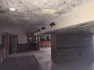 mold due to burst pipe in Columbus, Ohio
