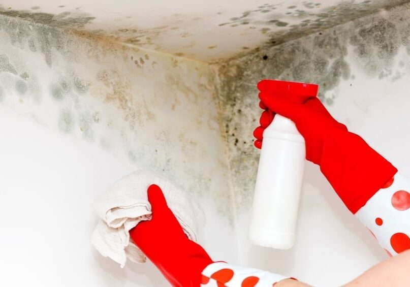 mold remediation of a residential property in Westerville, Ohio